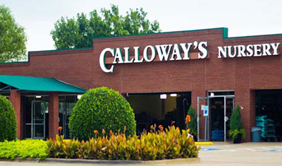 Calloway's is our Yard-of-the-Month Sponsor